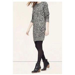 Ann Taylor Loft Leopard Sweater Dress